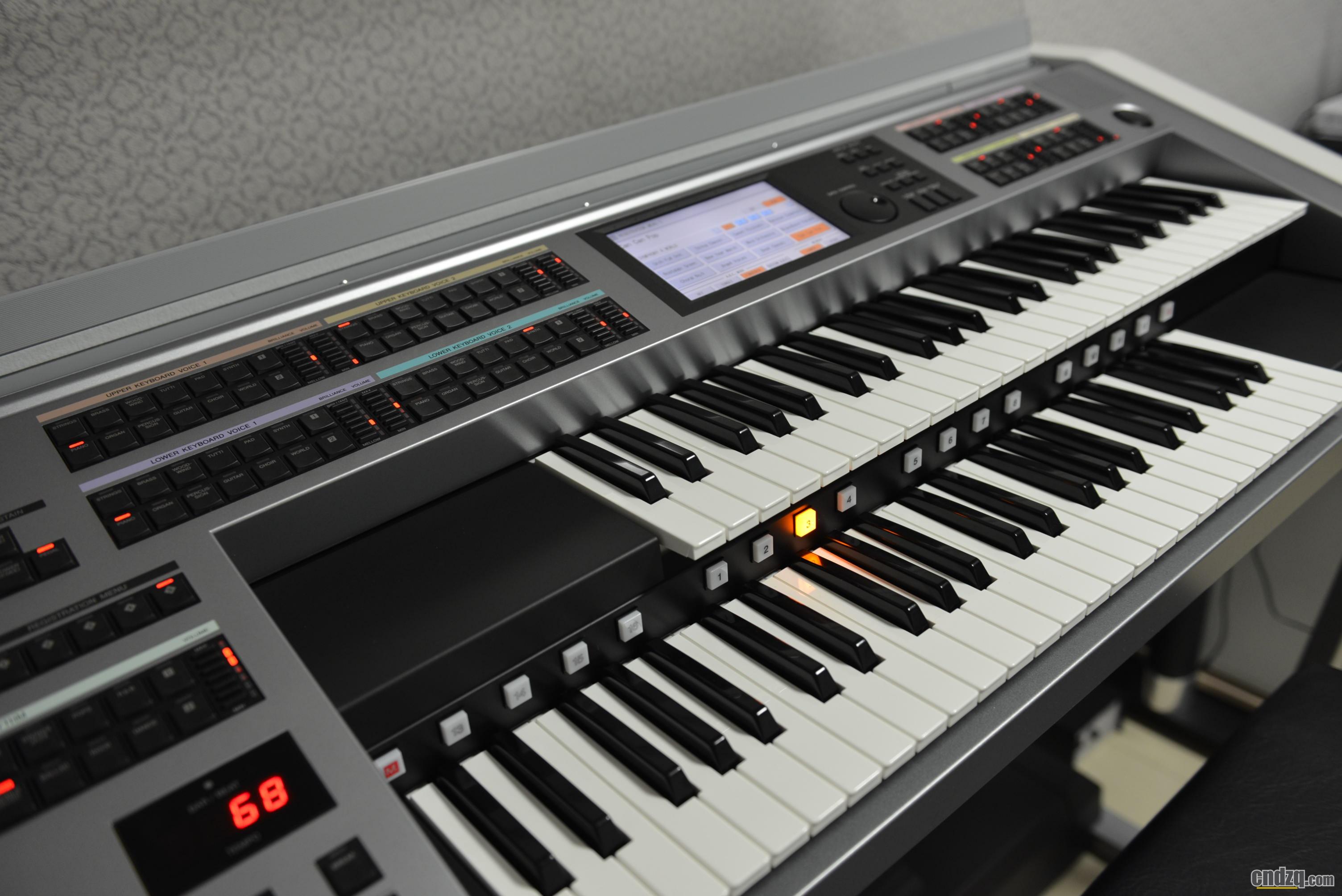 双排键和 电子琴 钢琴 哪个难图片