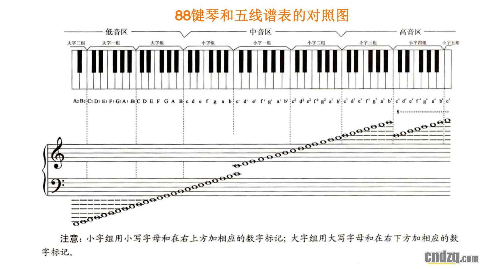 电子琴琴键分布图_俏娃宝贝电子琴琴键贴37键钢琴不干胶琴贴3D
