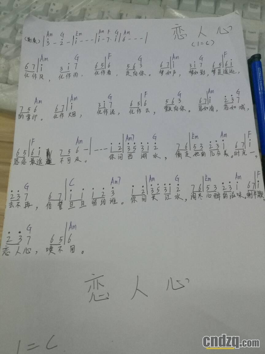 恋人心简谱与和弦 - 中国电子琴在线论坛 - powered