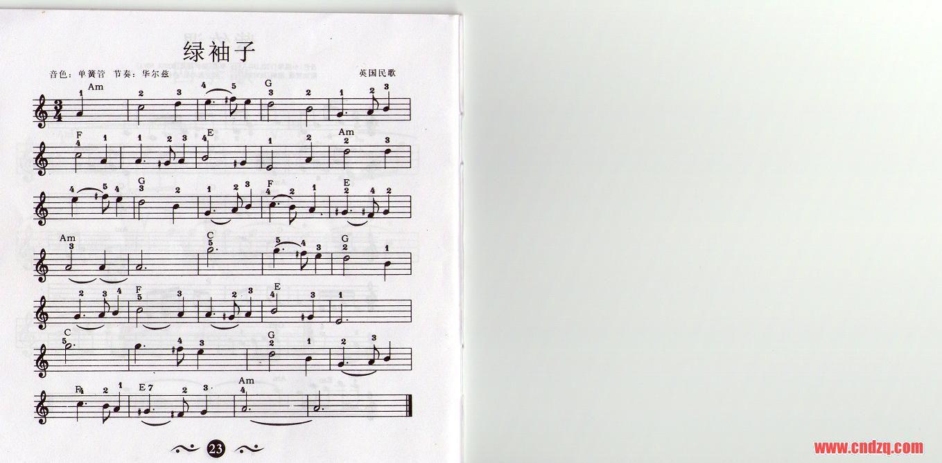 关瑞红的电子琴入门教程乐谱图片