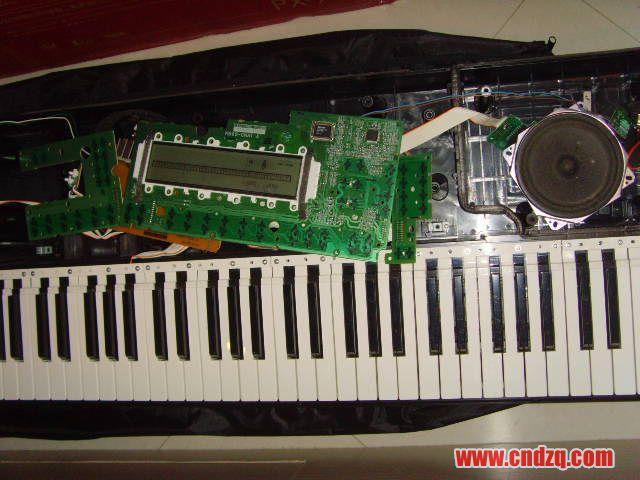 各位大侠,我的casio电子琴按键弹不起来怎么办呀